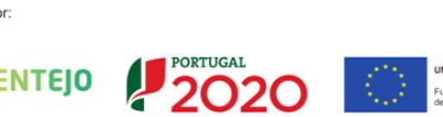 Internacionalização PineFlavour – Pine Nuts from Portugal